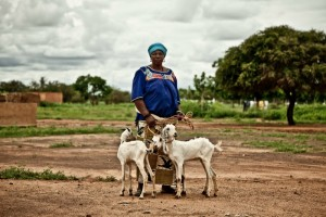 Photo with the caption $50 can cover the cost of providing food and immunisation for a goat in South Africa for one month