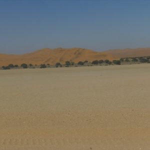 View of sand dunes