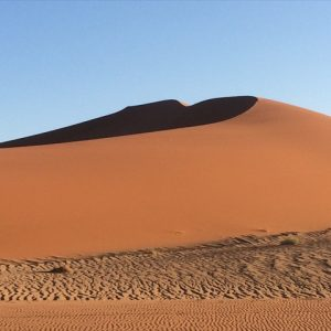 Day 14 - Sand dunes of Sossusvlei
