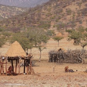 Day 41 - Passing Himba villages on way into Epupa Falls